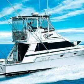 Pesca Deportiva - Puerto Vallarta - Envío Gratuito
